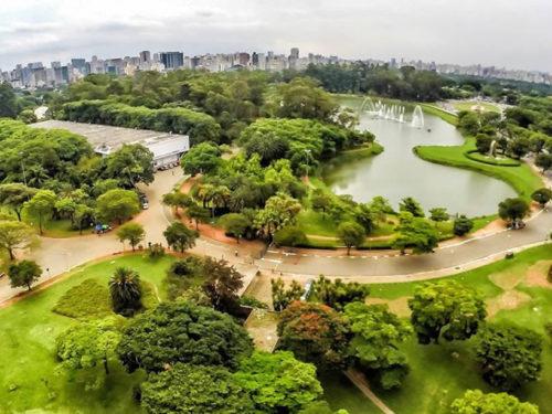 Parque do Ibirapuera - São Paulo-SP